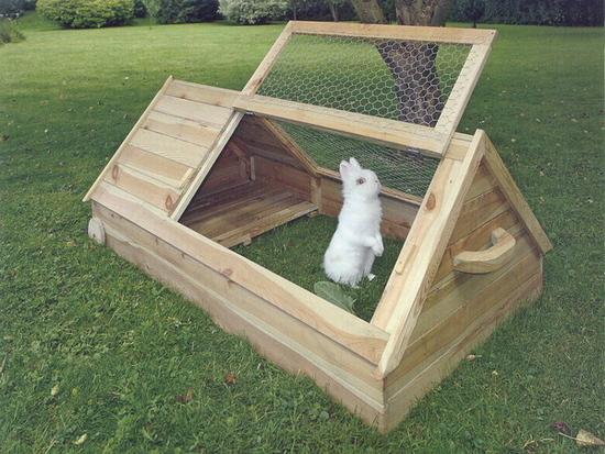 Первым этапом в решении вопроса как построить клетку для кроликов является ее месторасположение.  Ее нужно ставить в...