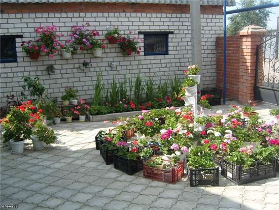 Дизайн двора и сада фото