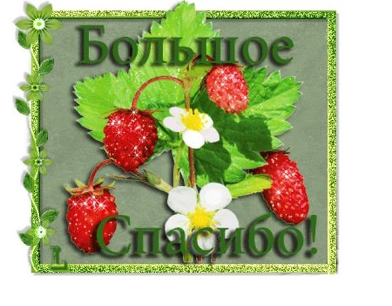http://img2.imgbb.ru/f/7/1/f71864fd7f1e640d8c600b8418260188_h.jpg